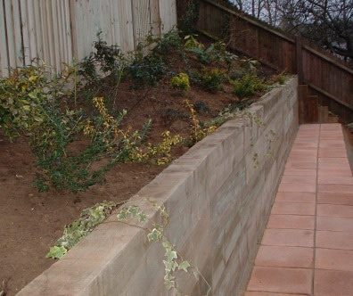 Plants, retaining wall and Firenza tiles hold back a steep bank.